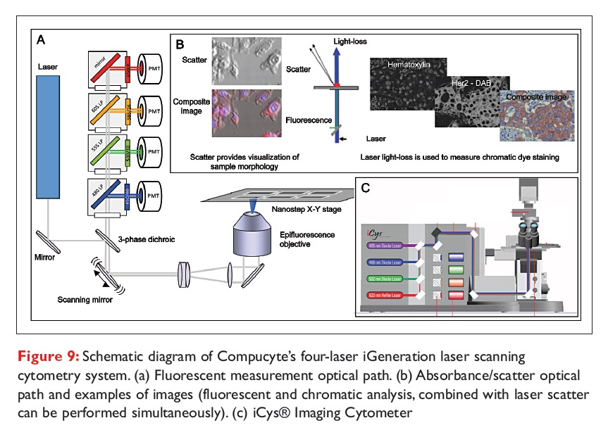 Figure 9 Schematic diagram of Compucyte's four-laser iGeneration laser scanning cytometry system