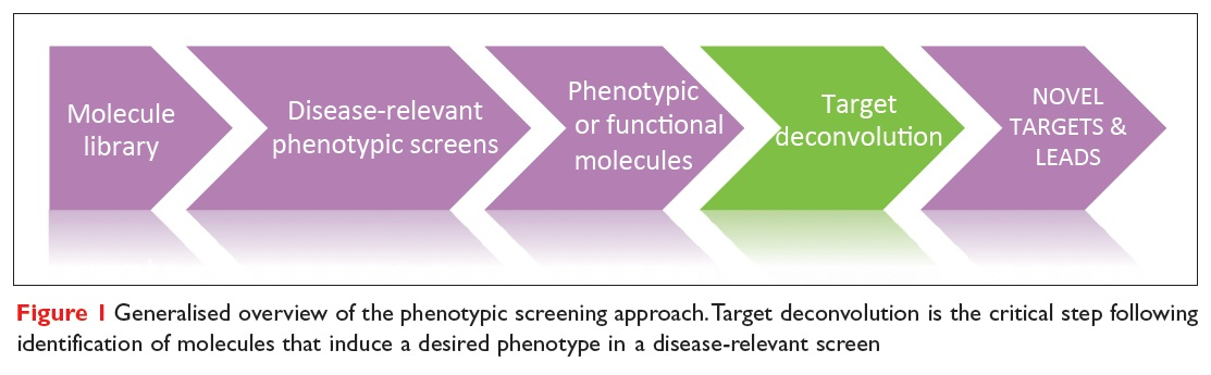 Figure 1 Generalised overview of the phenotypic screening approach