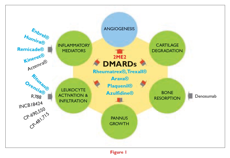 Figure 1 DMARDs, Angiogenesis, Cartilage Degredation, Bone Resorption, Panus Growth, Leukocyte activation & Infiltration, and Inflammatory mediators