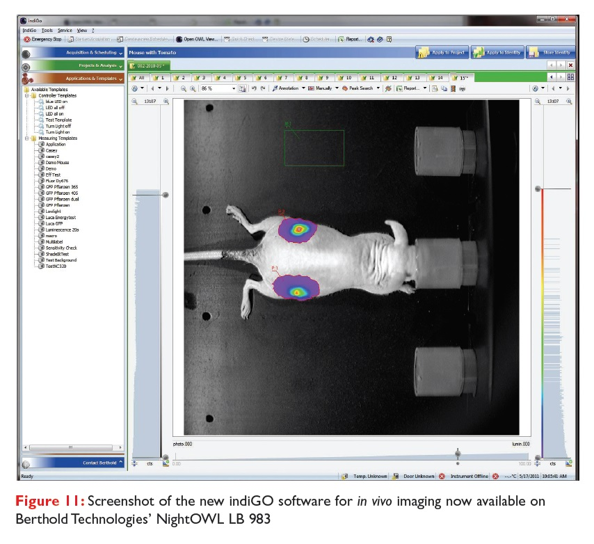 Figure 11 Screenshot of the new indiGO software for in vivo imaging now available on Berthold Technologies NightOWL LB 983