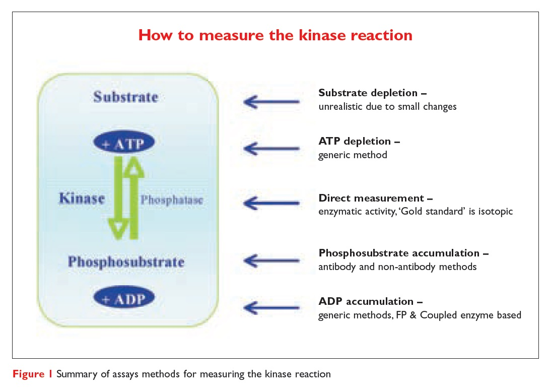 Figure 1 Summary of assays methods for measuring the kinase reaction