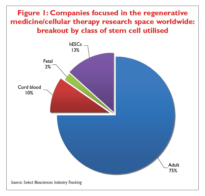Figure 1 Companies focues in the regenerative medicine/cellular therapy research space worldwide: breakout by class of stem cell utilised