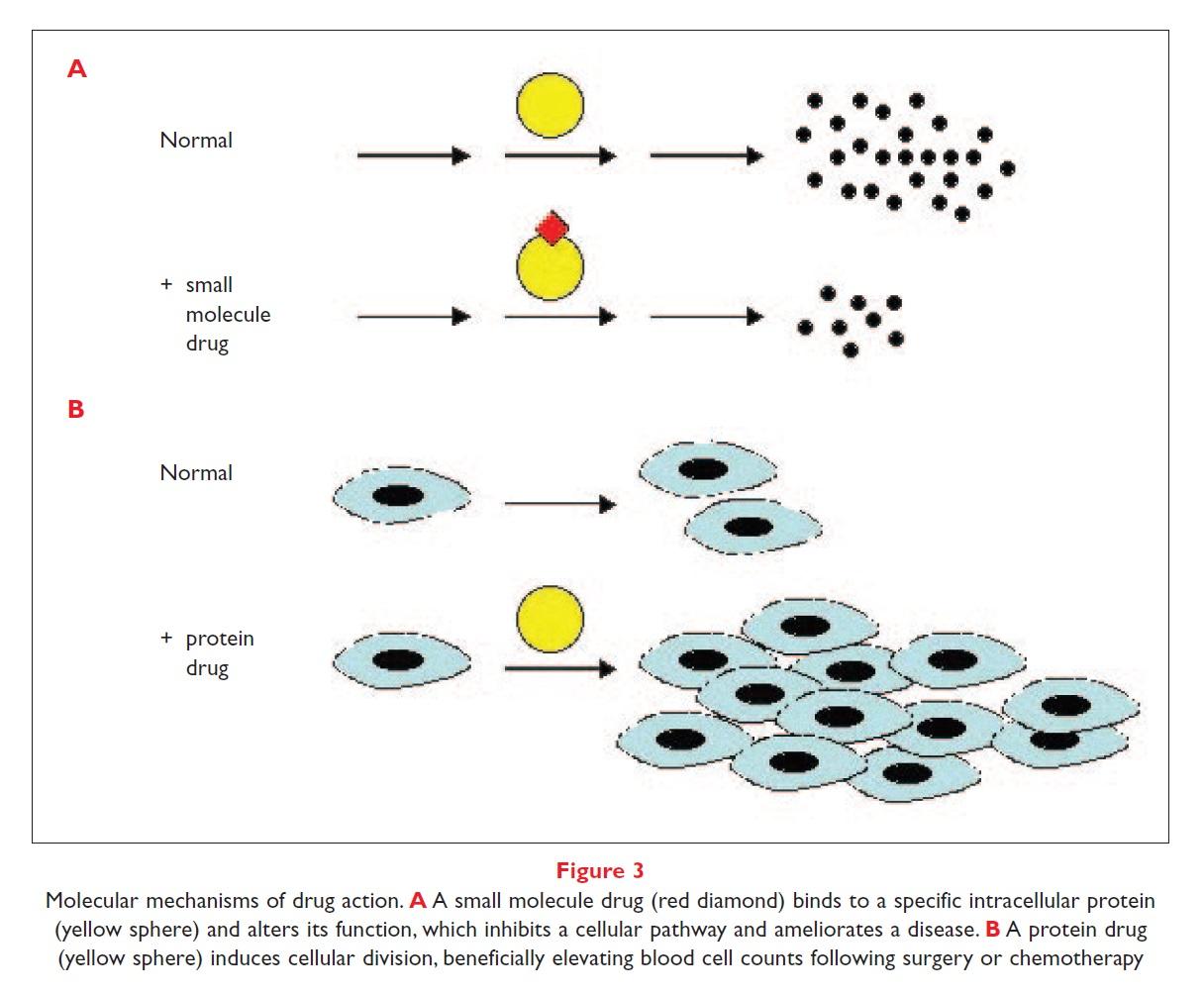 Figure 3 Molecular mechanisms of drug action