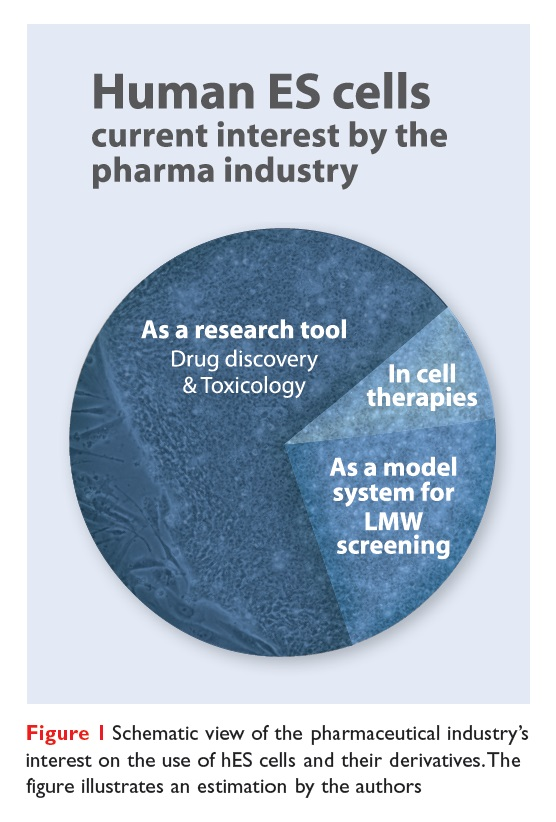 Figure 1 Schematic view of the pharmaceutical industry's interest on the use of hES cells and their derivatives