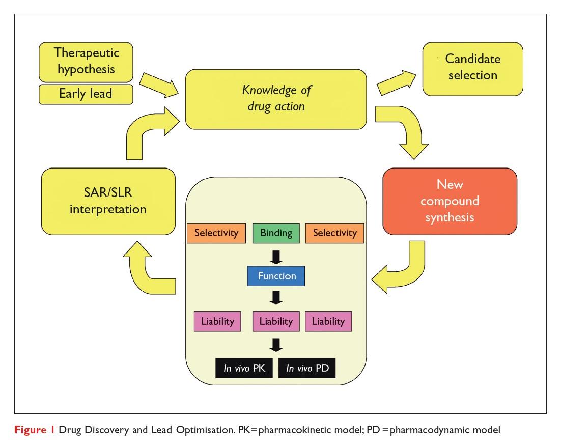 Figure 1 Drug Discovery and Lead Optimisation, pharmacokinetic model and pharmacodynamic model