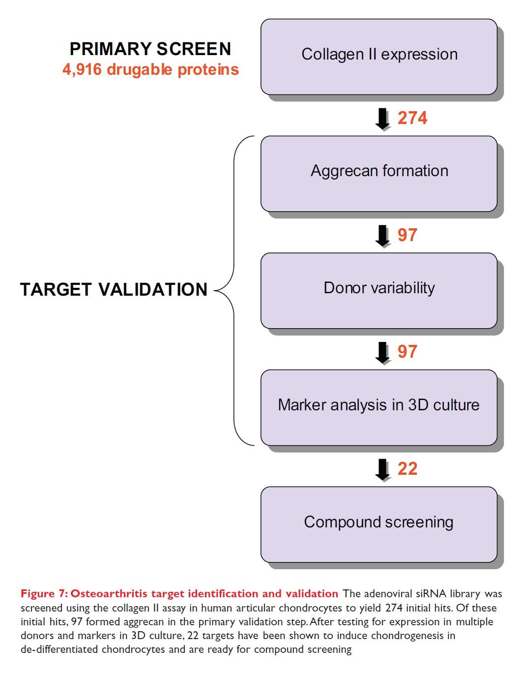 Figure 7 Osteoarthritis target identification and validation