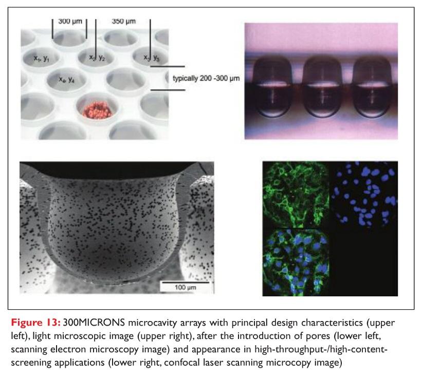 Figure 13 300 Microns microcavity arrays with principal design characterisitcs