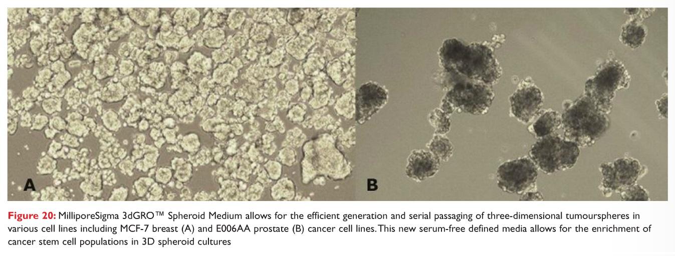 Figure 20 MilliporeSigma 3dGRO Spheroid Medium