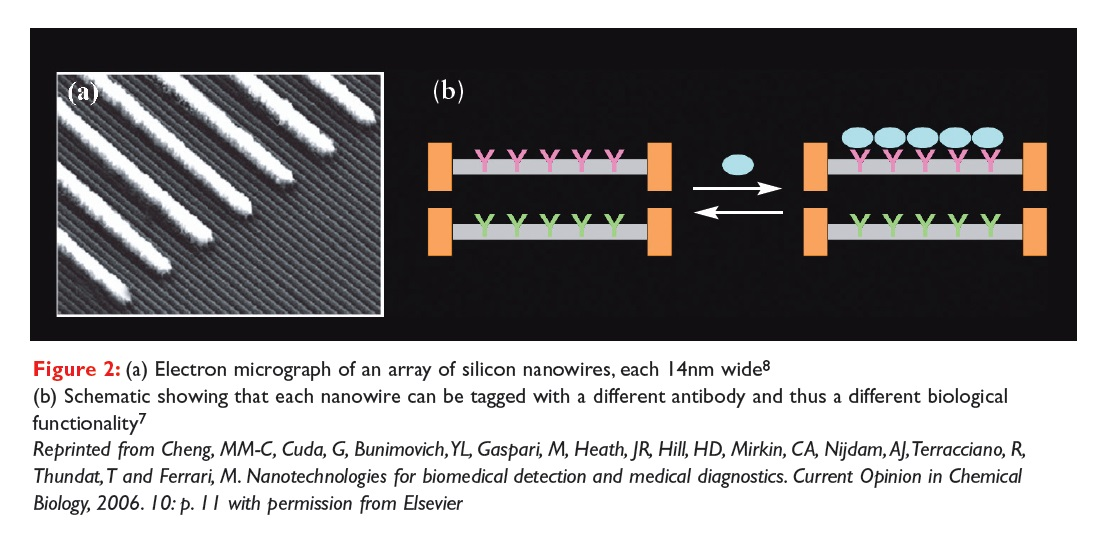Figure 2 Electron micrograph of an array of silicon nanowires