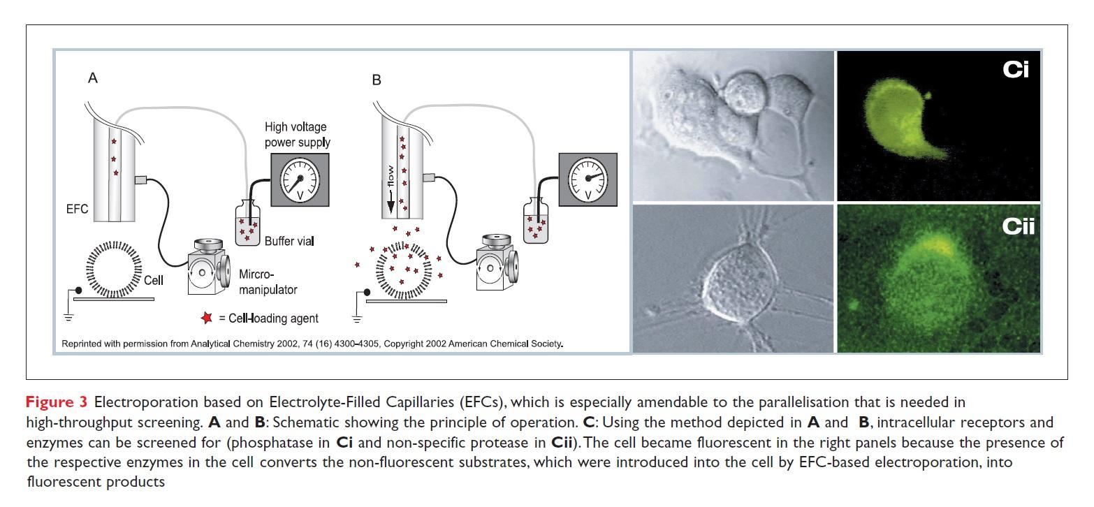 Figure 3 Electroporation based on Electrolyte-Filled Capillaries (EFCs)