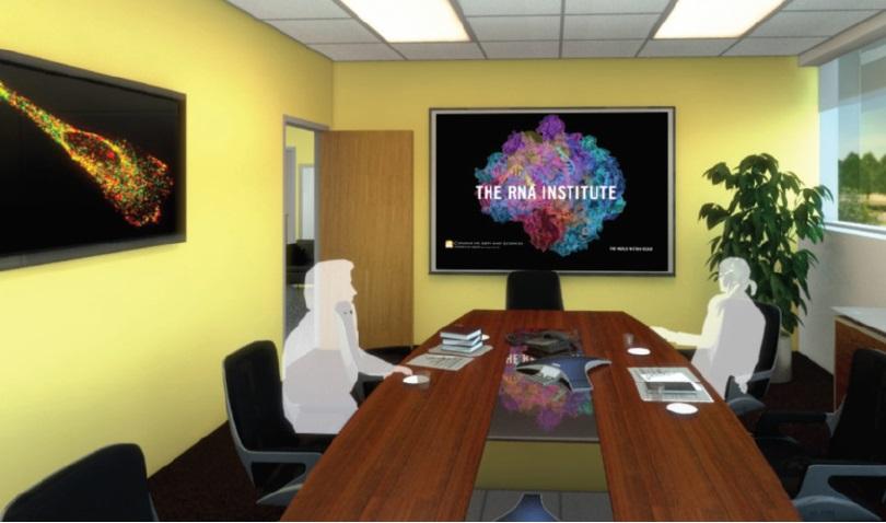 Image 2 The RNA Institute boardroom illustration