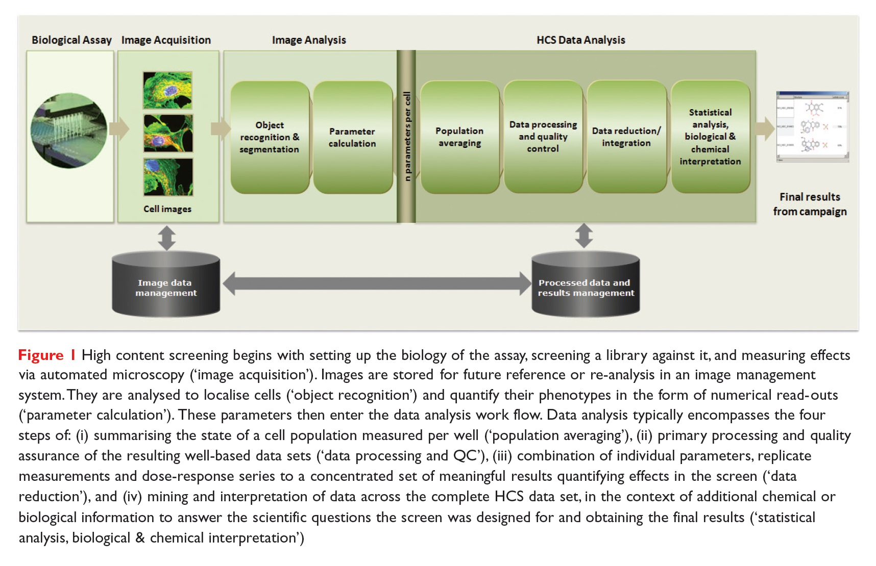 Figure 1 High content screening begins with setting up the biology of the assay, screening a library against it, and measuing effects via automated microscopy