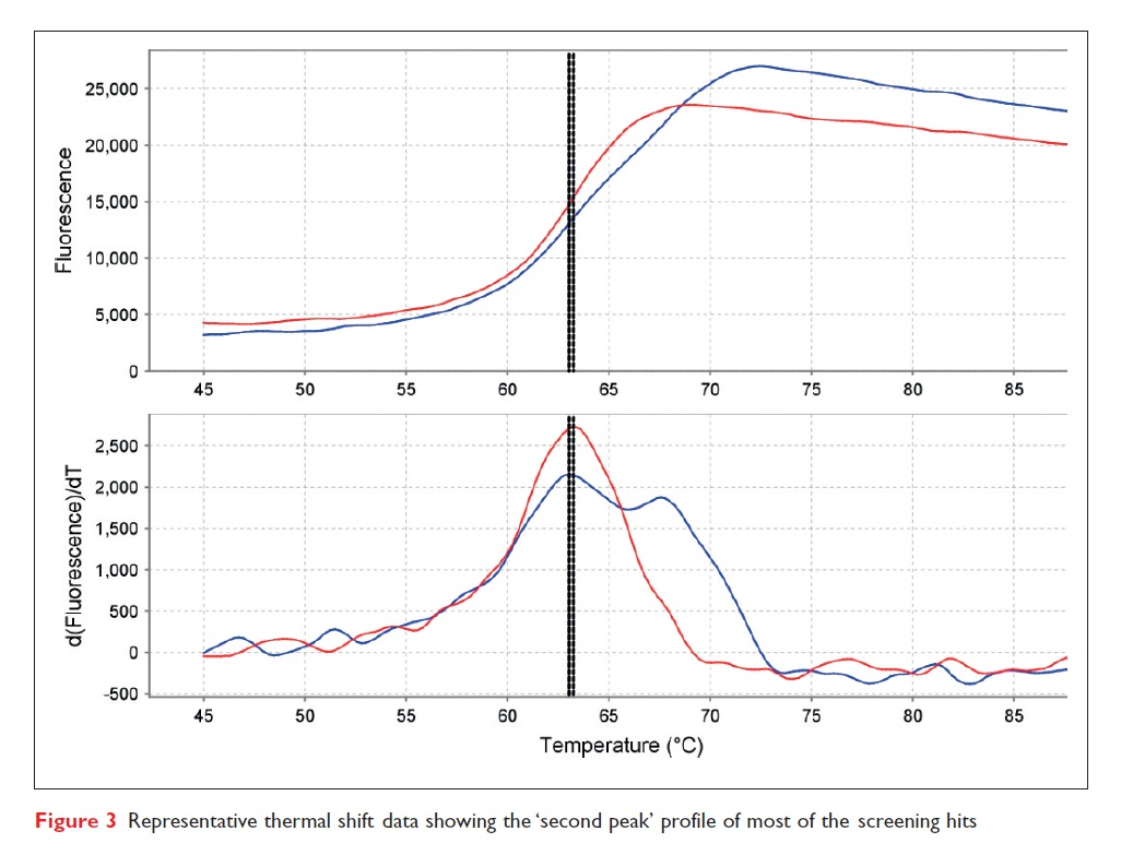 Figure 3 Representative thermal shift data showing the 'second peak' profile of most of the screening hits
