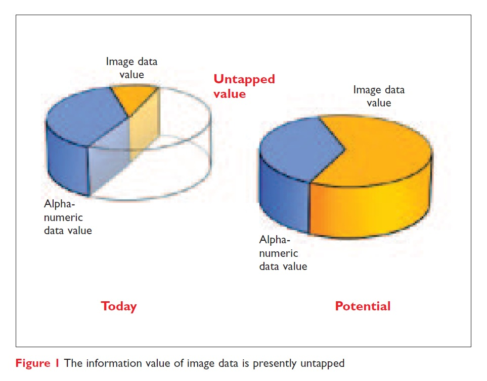 Figure 1 The information value of image data is presently untapped