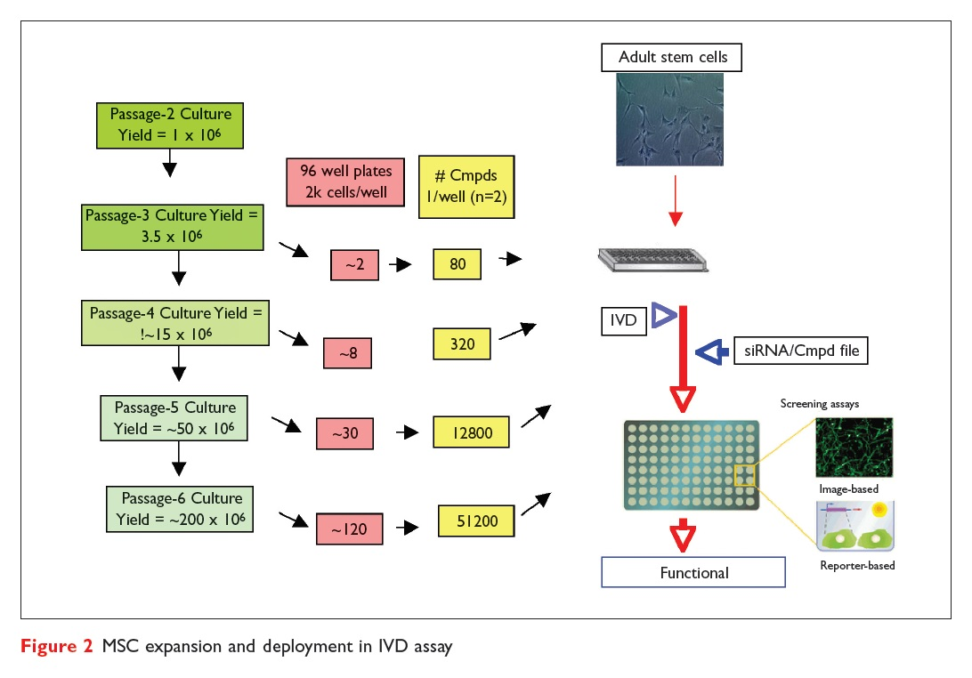Figure 2 MSC expansion and deployment in IVD assay