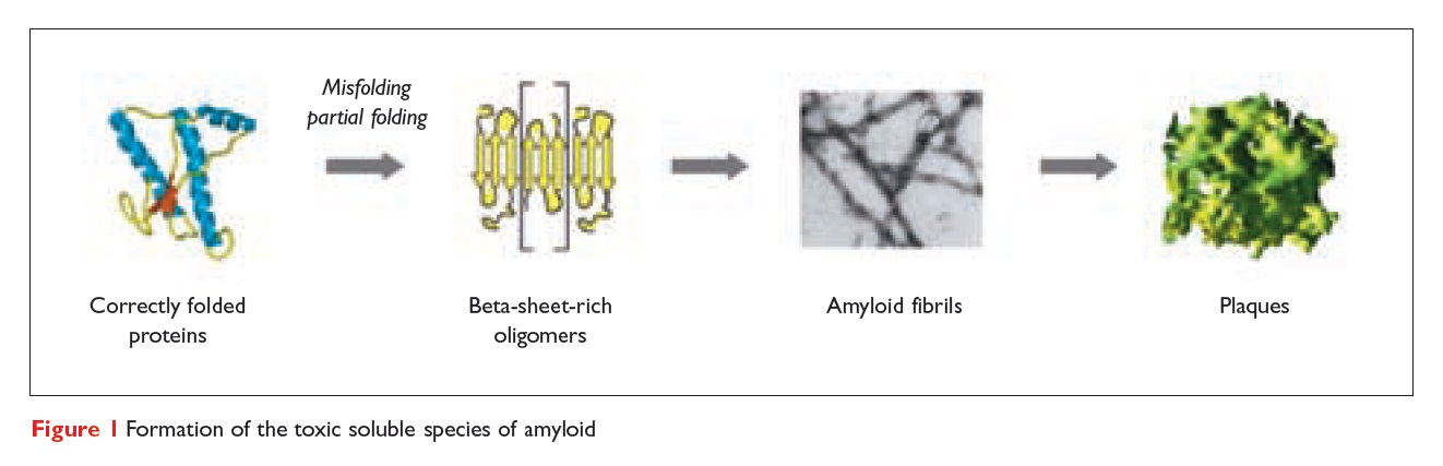 Figure 1 Formation of the toxic soluble species of amyloid