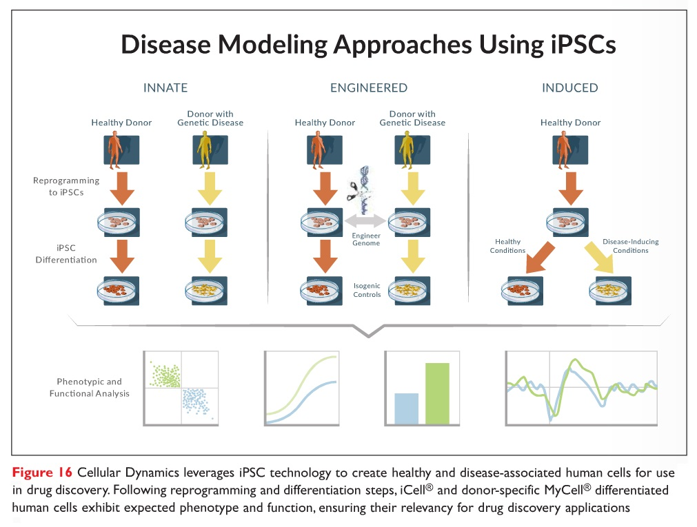 Figure 16 Cellular Dynamics leverages iPSC technology in drug discovery