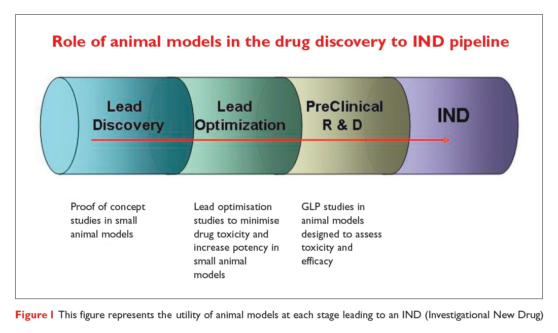 Figure 1 This figure represents the utility of animal models at each stage leading to an investigational new drug (IND)