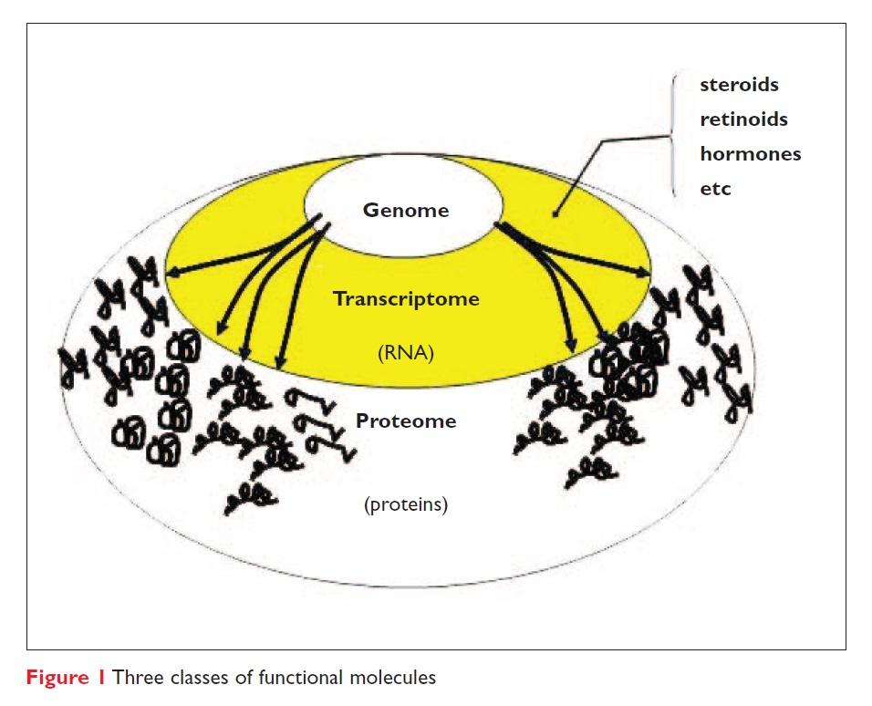 Figure 1 Three classes of functional molecules
