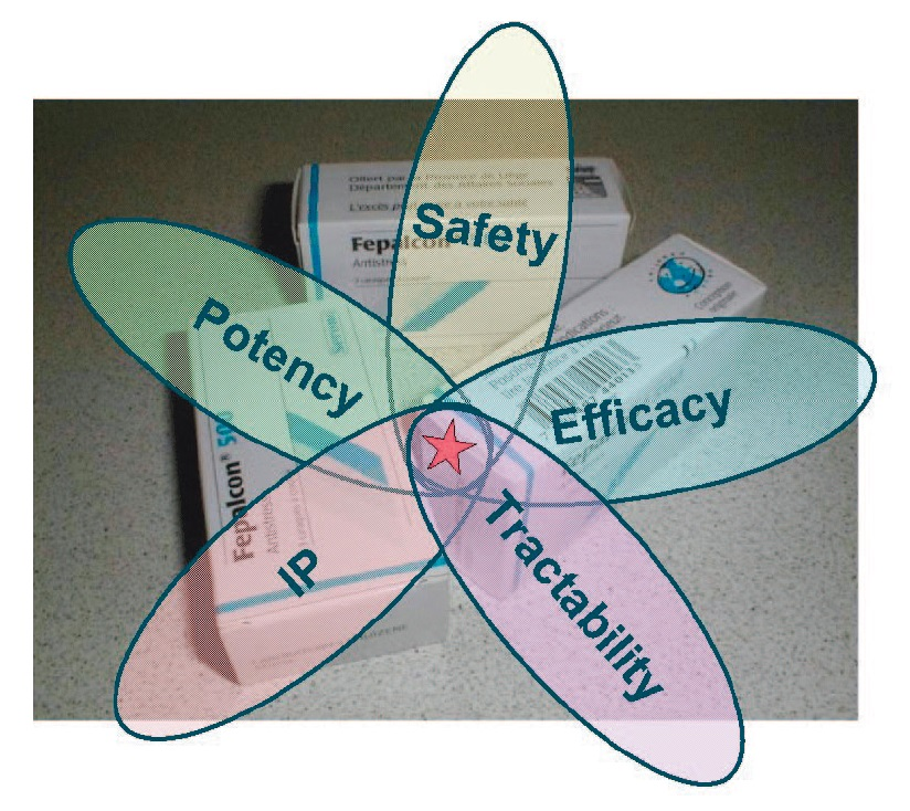Figure 1 Illustration showing link between drug safety, potency, IP, tractability, and efficacy