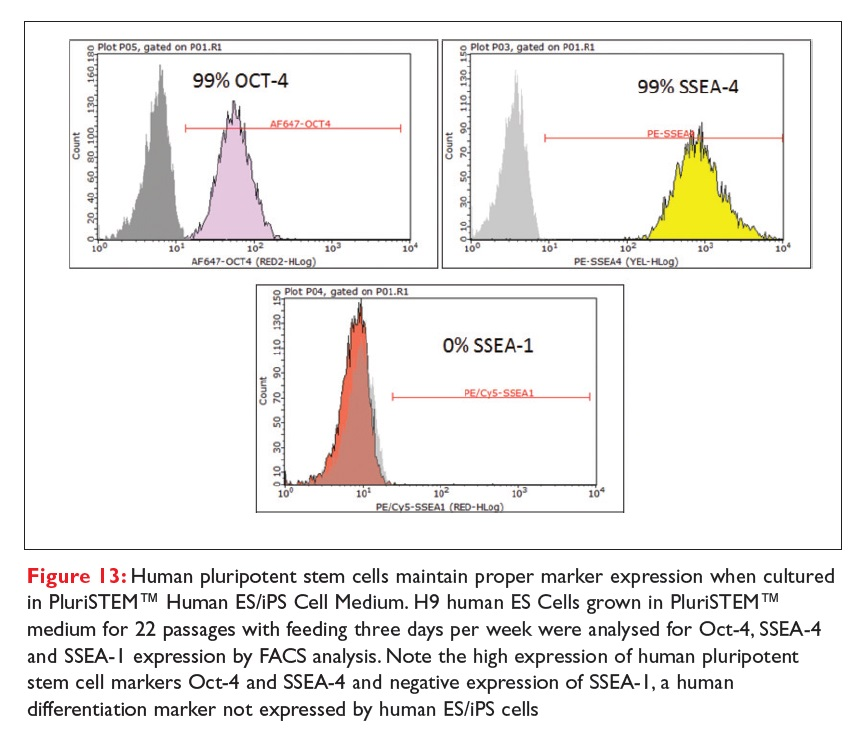 Figure 13 Human pluripotent stem cells maintain proper marker expression when cultured in PluriSTEM Human ES/iPS Cell Medium