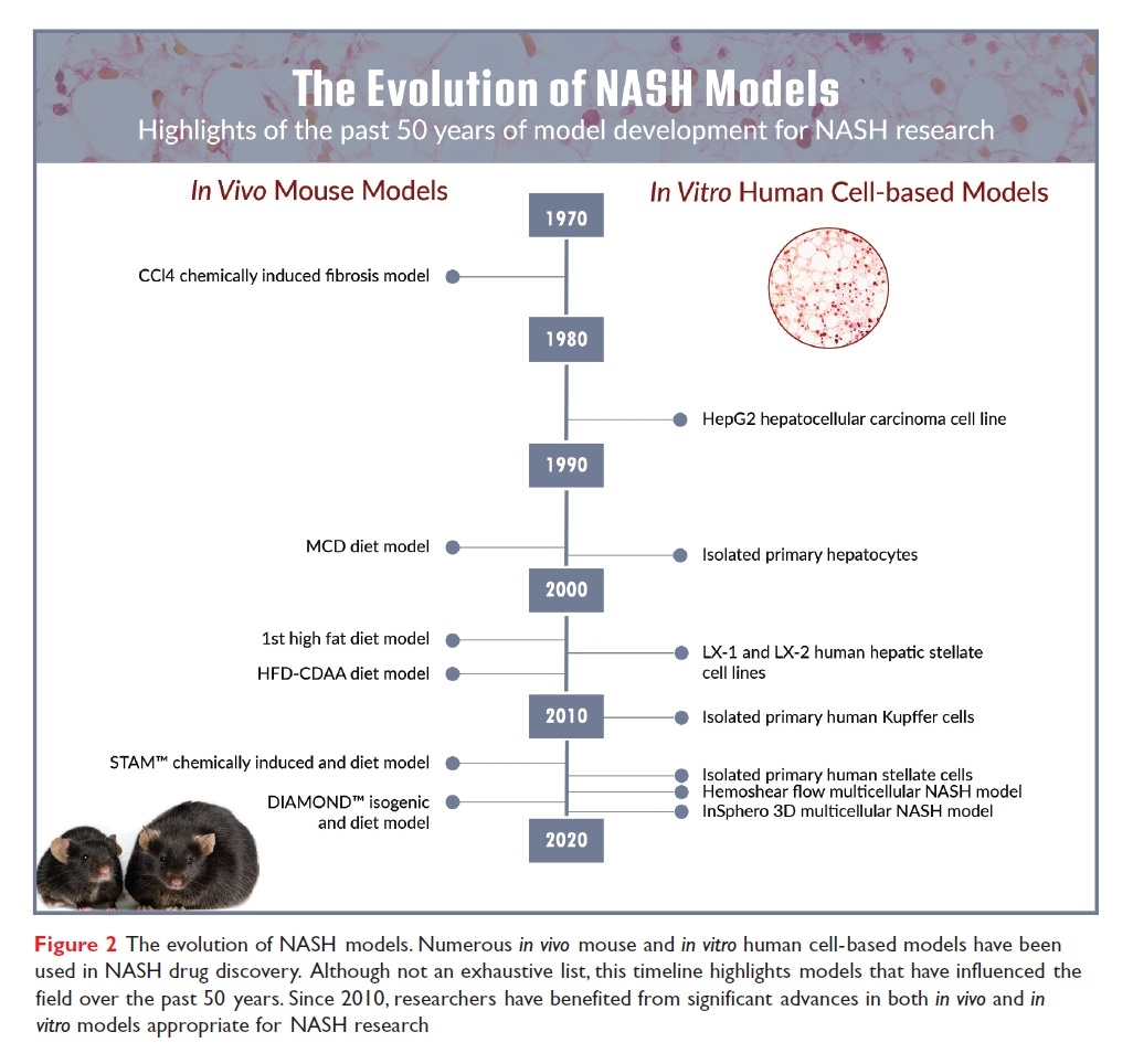 Figure 2 The evolution of NASH models, highlights of the past 50 years