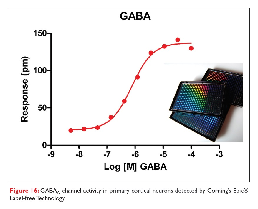 Figure 16 GABAa channel activity in primary corical neurons detected by Corning's Epic Label-free Technology
