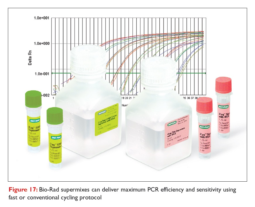 Figure 17 Bio-Rad supermixes can deliver maximum PCR efficiency and sensitivity using fast or conventional cycling protocol