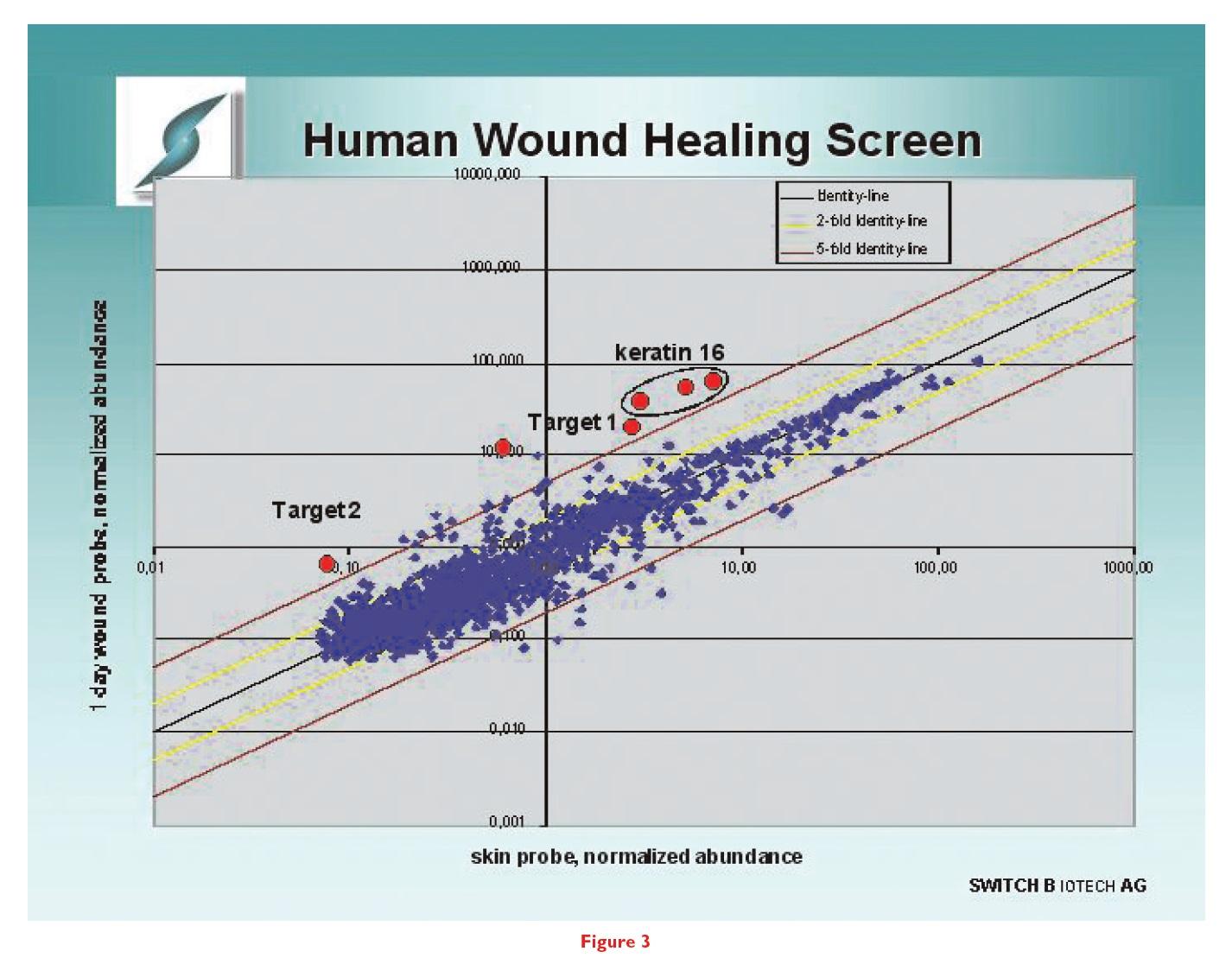 Figure 3 Human wound healing screen