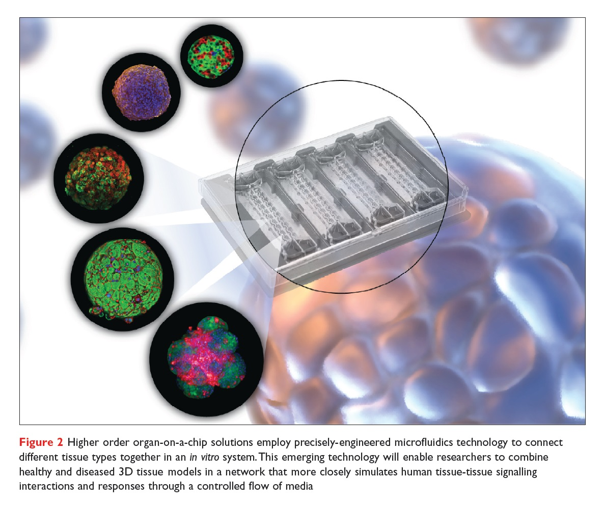 Figure 2 Higher order organ-on-a-chip solutions employ precisely-engineered microfluidics technology