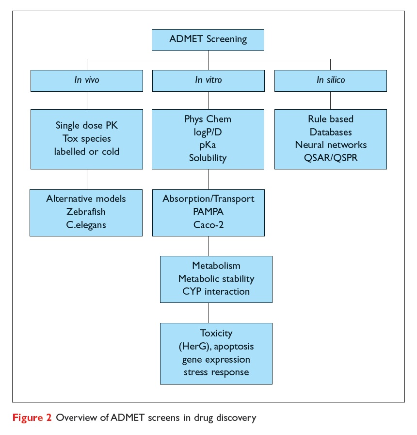 Figure 2 Overview of ADMET screens in drug discovery