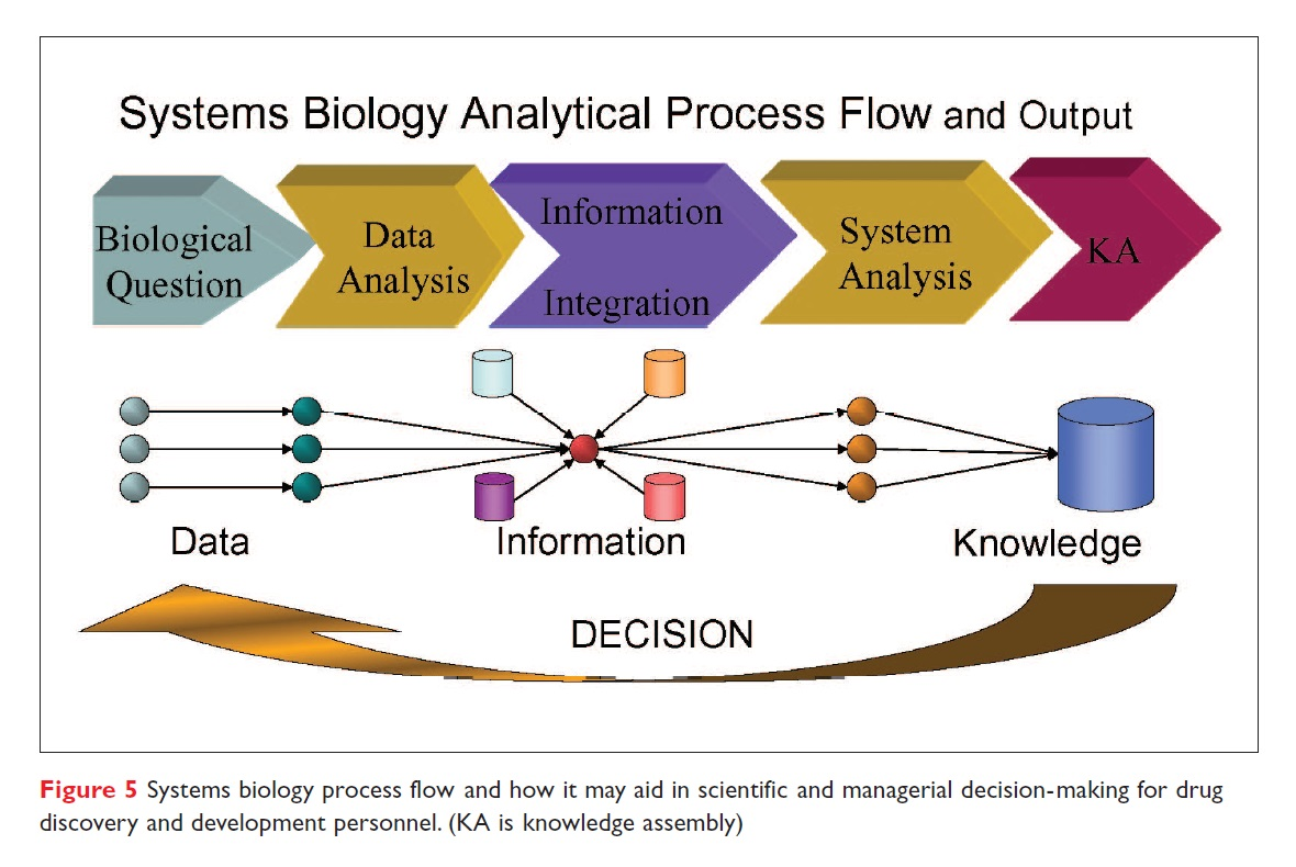 Figure 5 Systems biology process flow and how it may aid in scientific and managerial decision-making