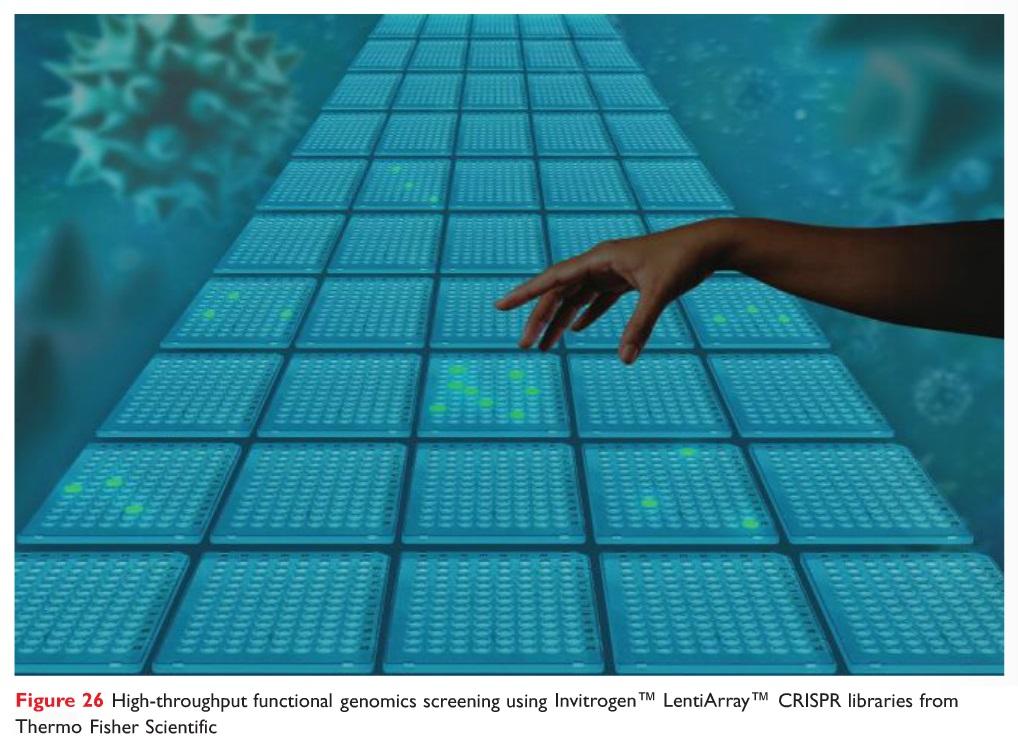 Figure 26 High-throughput functional genomics screening using Invitrogen LentiArray CRISPR libraries from Thermo Fisher Scientific