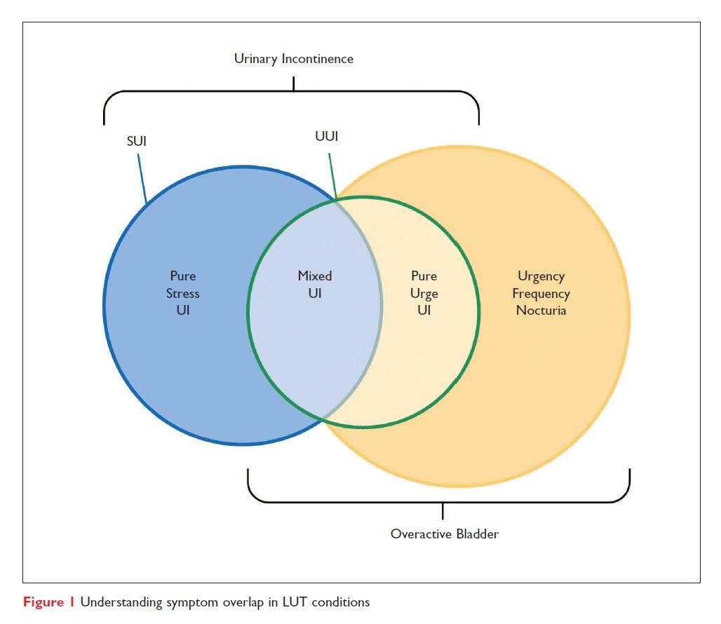 Figure 1 Understanding symptom overlap in LUT conditions