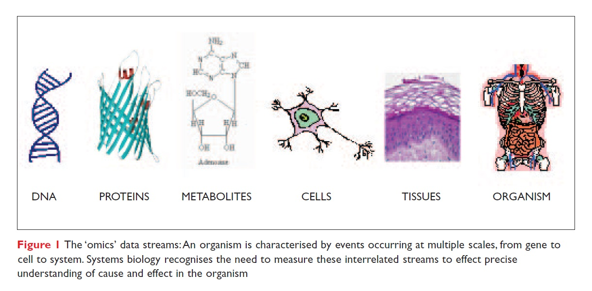 Figure 1 The 'omics' data streams: An organism is characterised by events occurring at multiple scales, from gene to cell to system