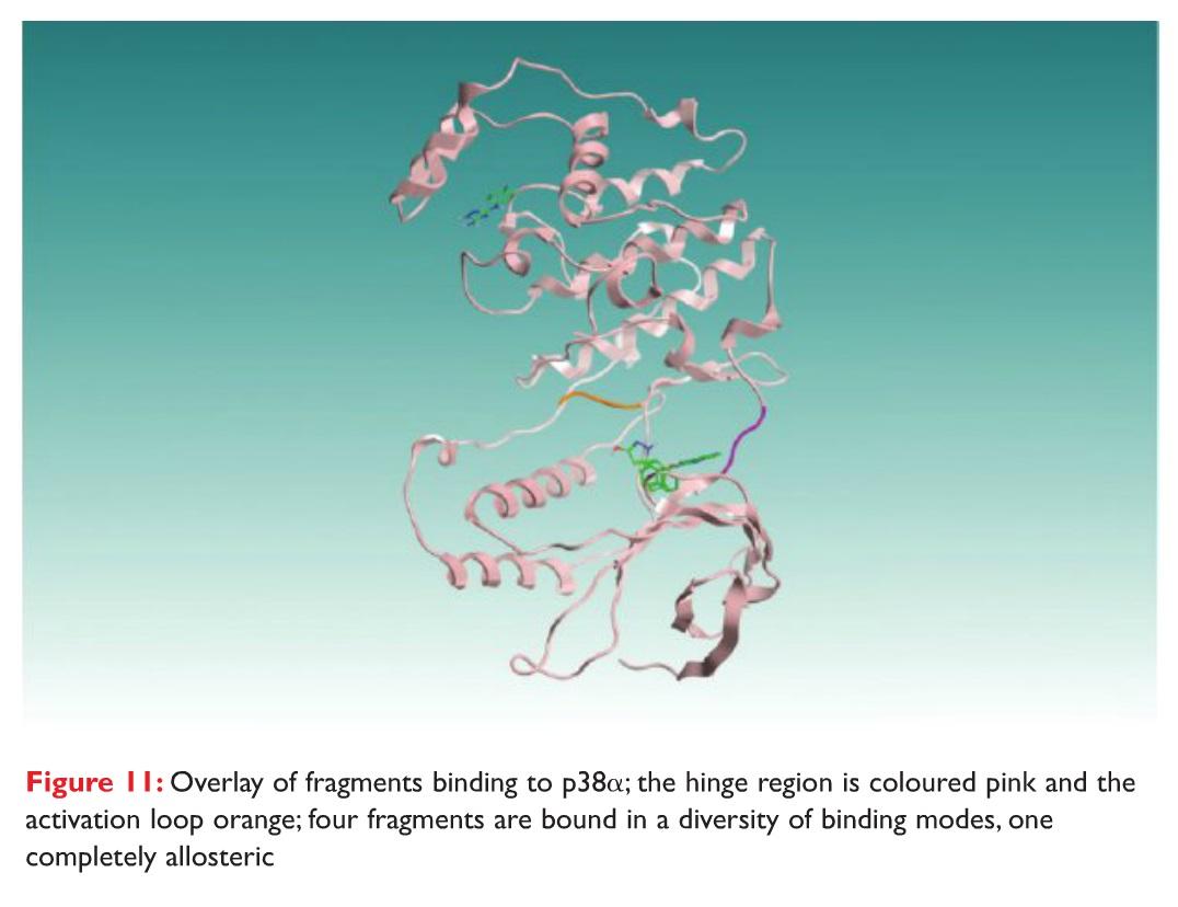 Figure 11 Overlay of fragments binding to p38alpha