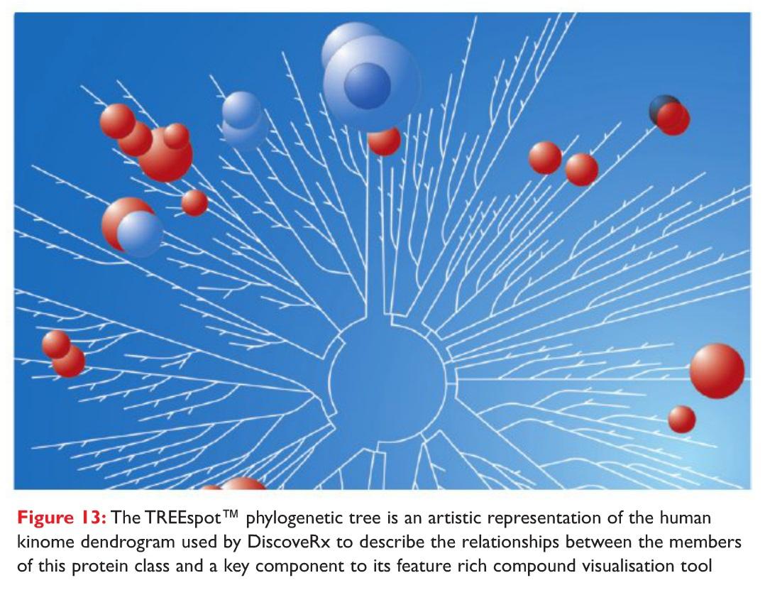 Figure 13 The TREEspot phylogenetic tree