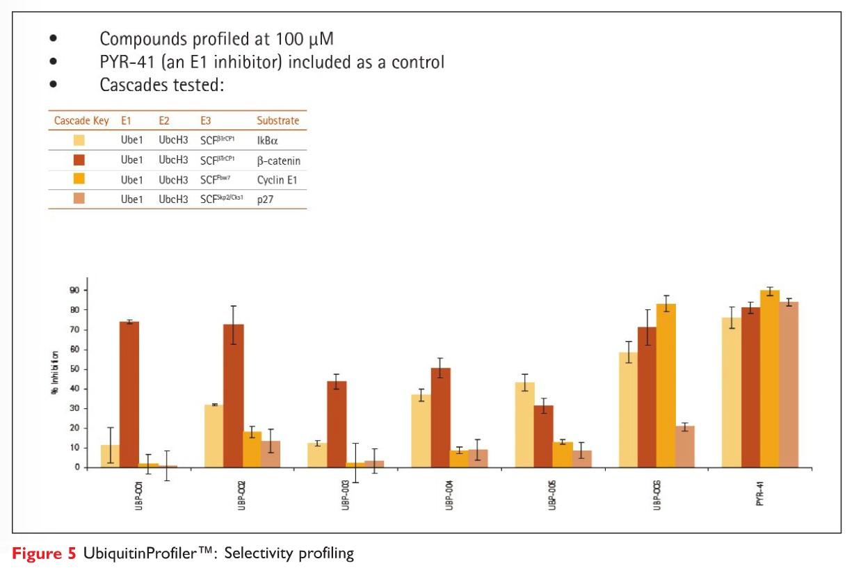 Figure 5 UbiquitinProfiler Selectivity Profiling