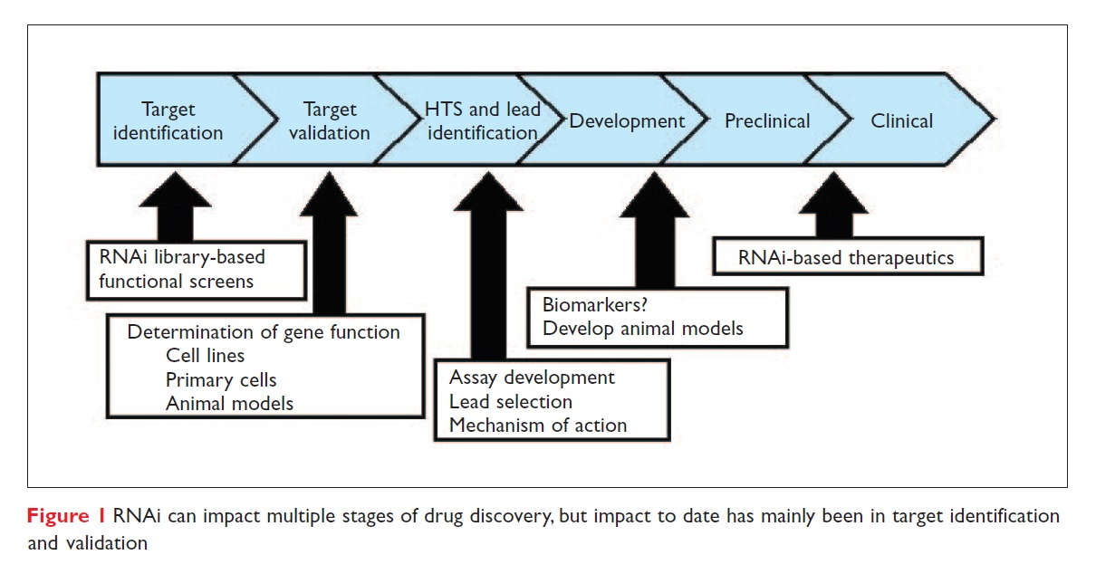Figure 1 RNAi can impact multiple stages of drug discovery