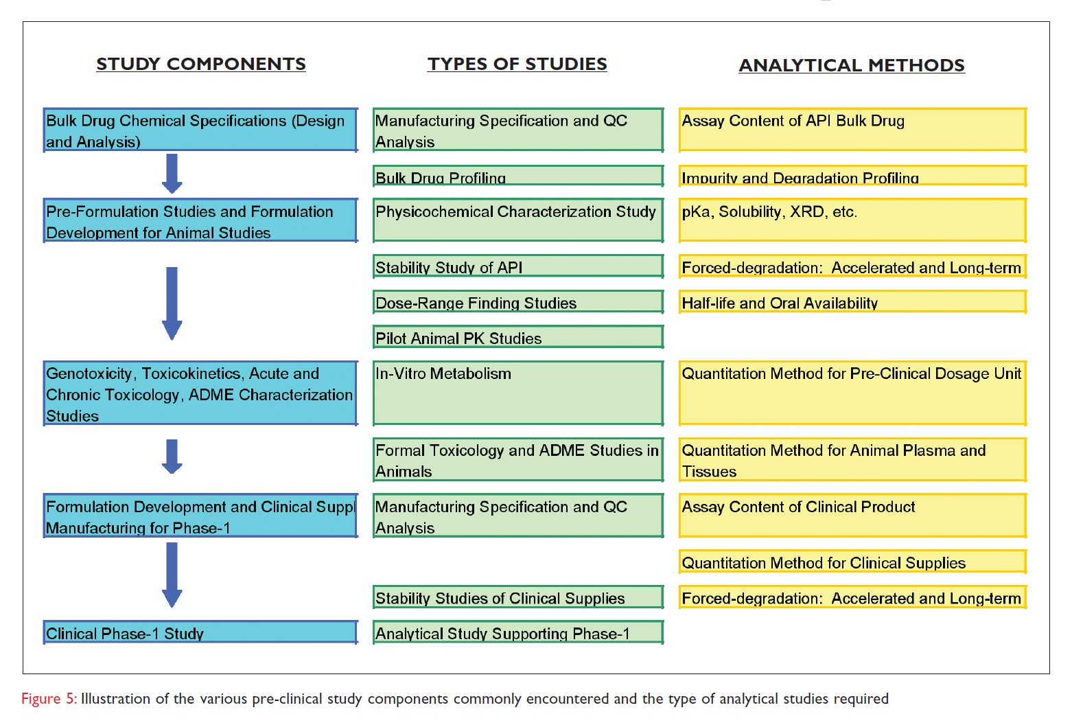 Figure 5 Illustration of the various pre-clinical study components commonly encountered and the type of analytical studies required
