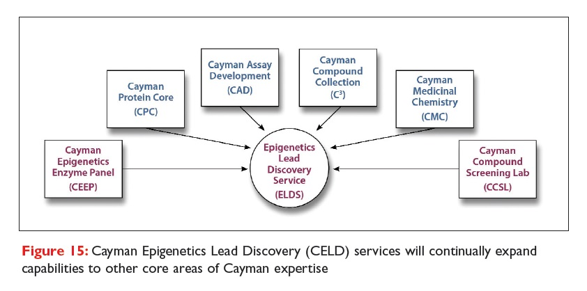 Figure 15 Cayman Epigenetics Lead Discovery (CELD) services will continuall expand capabilities to other core areas of Cayman expertise
