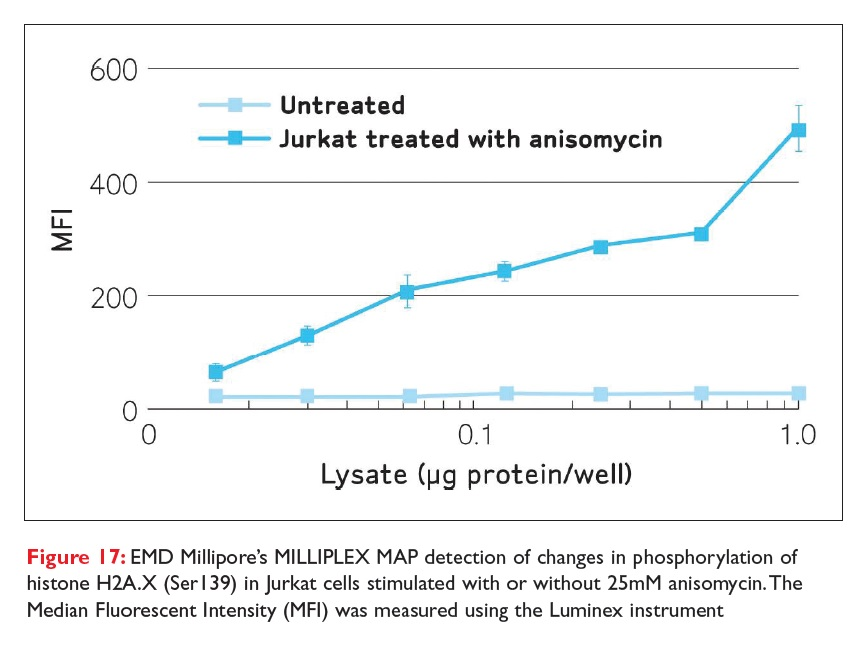 Figure 17 EMD Millipore's MILLIPLEX MAP detection of changes in phosphorylation of histone H2A.X (Ser139) in Jurkat cells