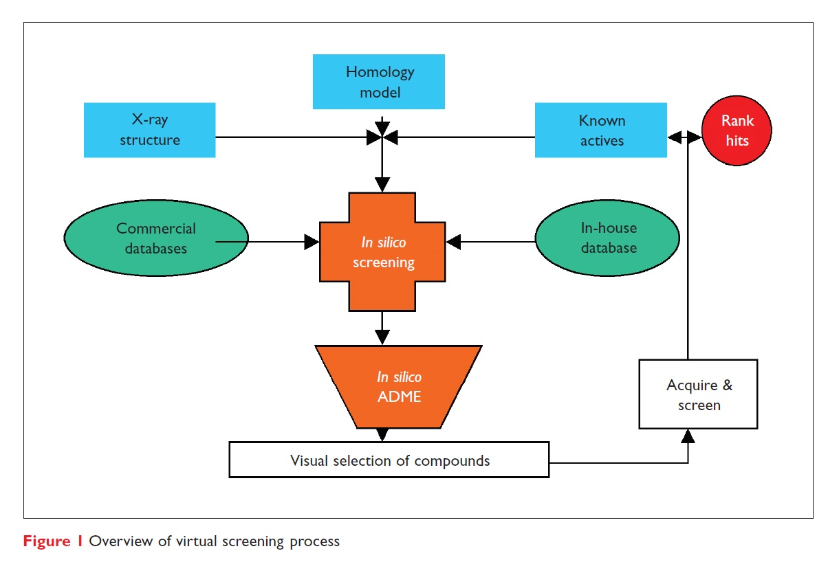 Figure 1 Overview of virtual screening process