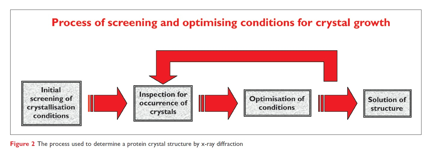 Figure 2 Process of screening and optimising conditions for crystal growth