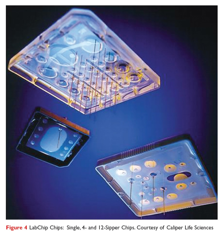 Figure 4 LabChip Chips: Single 4- and 12-Sipper Chips, Caliper Life Sciences