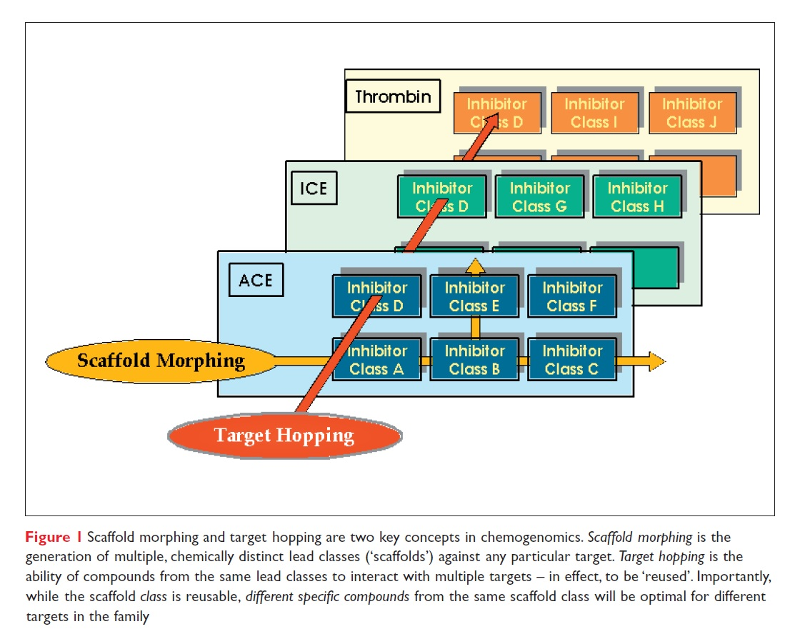Figure 1 Scaffold morphing and target hopping are two key concepts in chemogenomics