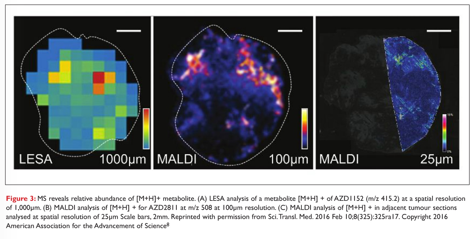 Figure 3 MS reveals relative abundance of [M+H]+ metabolite
