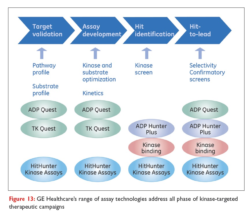Figure 13 GE Healthcare's range of assay technologies address all phase of kinase-targeted therapeutic campaigns
