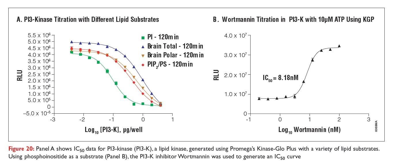 Figure 20 IC50 data for P13-kinase, a lipid kinase, generated using Promega's Kinase-Glo Plus