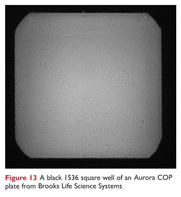 Figure 13 A black 1536 square well of an Aurora COP plate from Brooks Life Science Systems